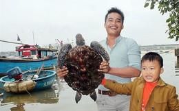 Ngư dân Quảng Trị bắt được rùa quý hiếm, nặng 12kg