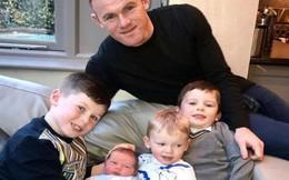 Rộ tin đồn Rooney sắp bị vợ bỏ vì thói trăng hoa