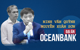 Luật sư: Nguyễn Xuân Sơn khai ra đưa tiền cho Ninh Văn Quỳnh để mong khoan hồng