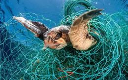 """Gần 700 ngàn tấn """"sát thủ thầm lặng"""" đang lọt ra các đại dương mỗi năm"""