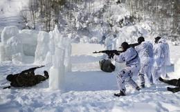Bất ngờ về lực lượng đặc nhiệm của Vệ binh Quốc gia Nga