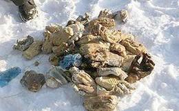 Phát hiện hàng chục bàn tay người trong túi xách ở Nga