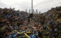 """24h qua ảnh: Xe đạp chất thành """"núi"""" tại nghĩa địa xe đạp lớn nhất Trung Quốc"""