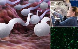 """Làm """"chuyện ấy"""" trong vũ trụ được, nhưng liệu con người có thể thụ thai không?"""