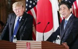 Nhật mạo hiểm thuyết phục Mỹ về với CPTPP