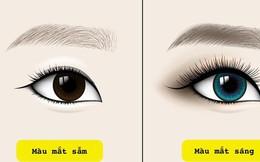 """Tiết lộ 5 sự thật về tính cách và sức khỏe qua màu mắt mà khoa học nói """"chắc như đinh đóng cột"""""""