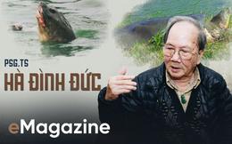 Lần đầu tiết lộ những ngày cuối đời của Cụ Rùa và cuộc lột xác để trở lại Hồ Gươm