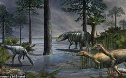 Làm thế nào khủng long thống trị Trái đất? Kỷ nguyên ấy bắt đầu bằng Đại Tuyệt Chủng