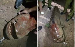 """Sự thật về con """"thủy quái"""" nặng gần 80kg bắt ở ao làng gây xôn xao mạng xã hội"""