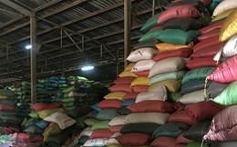 Kiểm tra hàng loạt cơ sở cà phê, tiêu sau vụ trộn phế phẩm cà phê, than pin vào tiêu
