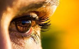 Mắt có thể báo hiệu nguy cơ mắc bệnh tim mạch