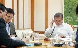 Ông Moon Jae-in điện đàm về thượng đỉnh liên Triều với ông Donald Trump, không sang Mỹ như dự tính