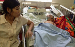 Nghệ An: Bé trai 19 tháng tuổi bị ong đốt phù toàn thân, suy gan nặng