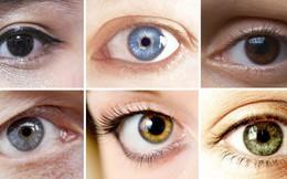 Tại sao màu mắt mỗi người khác nhau?