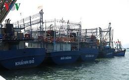 6 chủ tàu vỏ thép ở Bình Định thống nhất mức bồi thường