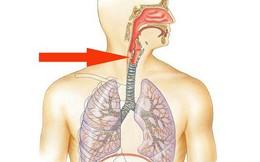 Khi thấy khó nuốt và các triệu chứng này, hãy cảnh giác với căn bệnh ung thư thực quản