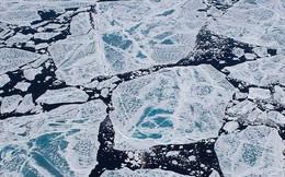 Đến Bắc Cực cũng đã xuất hiện một chất cực nhỏ đang gây hại cho toàn thế giới