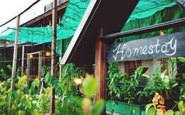 Homestay, Bed & Breakfast, Hostel: Đi du lịch nhiều nhưng bạn đã hiểu hết các khái niệm này chưa?