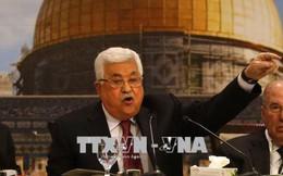 Palestine kêu gọi cộng đồng casino o viet nam bảo vệ