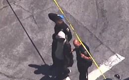 Cúi người tìm túi xách thất lạc, tài xế xe buýt phát hiện đôi giày đỏ trên chân đứa bé 3 tuổi liền lập tức gọi cảnh sát