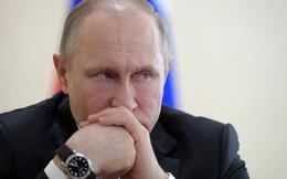 Tổng thống Putin hé lộ cách đáp trả lệnh trừng phạt Mỹ