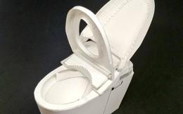 Công ty thiết bị vệ sinh lớn nhất thế giới vừa cho phép tải về bồn cầu để bạn tự làm ở nhà