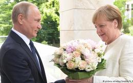 Báo Nga tung bằng chứng báo Đức 'chuyện bé xé ra to' về bó hoa ông Putin tặng bà Merkel