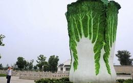 Những bức tượng độc đáo không giống ai chỉ có ở Trung Quốc