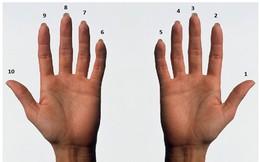 Bạn có thể đếm đến bao nhiêu với bàn tay của mình?