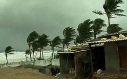 Hình ảnh: Bão cát kinh hoàng quét qua Ấn Độ làm 77 người chết