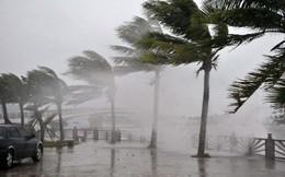 Việt Nam sẽ hứng chịu bao nhiêu cơn bão trong năm 2018?