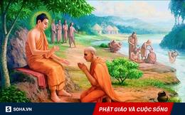 Đức Phật hỏi đệ tử già bao nhiêu tuổi, người này đáp mới lên 5: Sự thật và lý do đáng ngẫm