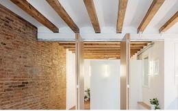 Căn hộ 46 m2 ngập tràn ánh sáng sau khi cải tạo