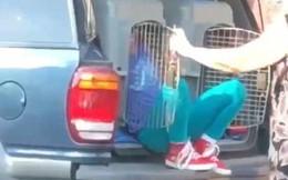 Người đi đường phát hiện một chiếc xe ngừng lại, ngay khi thấy đứa trẻ bước ra từ cốp xe liền báo cảnh sát