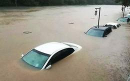 Trung Quốc: Những hình ảnh dở khóc dở cười trong mùa bão lũ ngập lụt