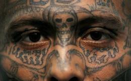 Chân dung MS -13 - băng tội phạm lấy cưỡng hiếp, giết người làm vui