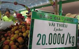 Trung Quốc trúng mùa, trái vải Việt Nam rớt giá sớm