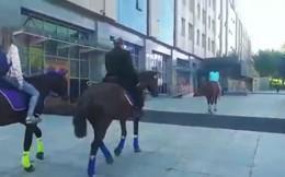 Cưỡi ngựa đi làm phản đối giá xăng tăng, nghị sỹ Nga bị cảnh sát tạm giữ