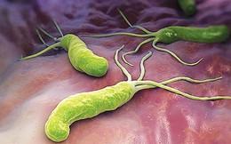 Hà Nội: Cả nhà nhiễm vi khuẩn gây bệnh dạ dày, chuyên gia lưu ý 2 sai lầm nguy hiểm