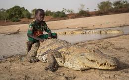 7 ngày qua ảnh: Cậu bé cưỡi trên lưng cá sấu khổng lồ