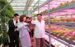 Tờ Nikkei tiết lộ lý do ông Kim Jong Un chọn Việt Nam là mô hình kinh tế lý tưởng cho Triều Tiên