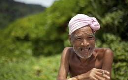 Sau 29 năm một mình sống trên đảo, mơ ước được ở đây đến cuối đời của ông lão 82 tuổi đã không thành hiện thực