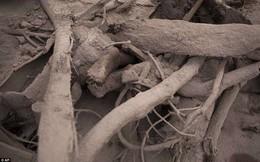 Những bức hình ám ảnh về thảm họa núi lửa ở Guatemala khiến 69 người chết