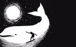 Bạn nhìn thấy người đang lướt sóng hay chú cá heo? Đáp án sẽ tiết lộ phong cách sống của bạn