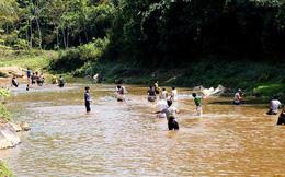 Nghệ An: Hai học sinh lớp 1 đuối nước thương tâm ở khe suối gần nhà
