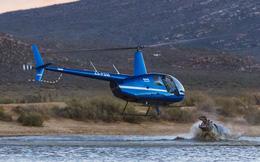 24h qua ảnh: Hà mã khổng lồ vươn khỏi mặt nước tấn công trực thăng