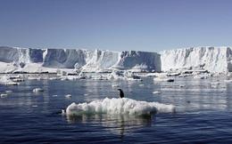 Trái đất gặp nguy trước một hiện tượng đang diễn ra hàng ngày?