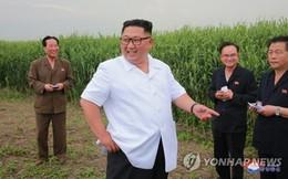 Chuyến thị sát đặc biệt của ông Kim Jong-un sau khi trở về từ Trung Quốc