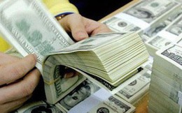 Doanh nghiệp Việt rót thêm 260 triệu USD đầu tư ra nước ngoài