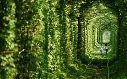 """Ghé thăm """"đường hầm tình yêu"""" đẹp ma mị ở Ukraine, nơi những cặp đôi một lần lạc bước sẽ chẳng muốn quay về"""